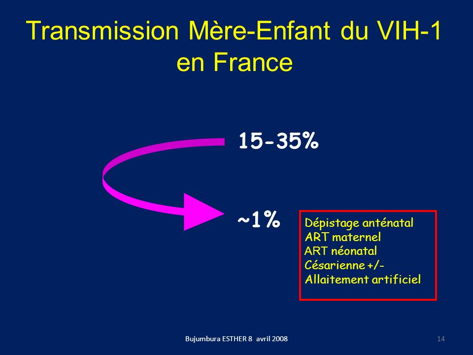 Transmission Mère-Enfant du VIH-1 en France