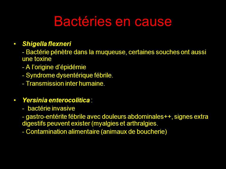 Bactéries en cause Shigella flexneri
