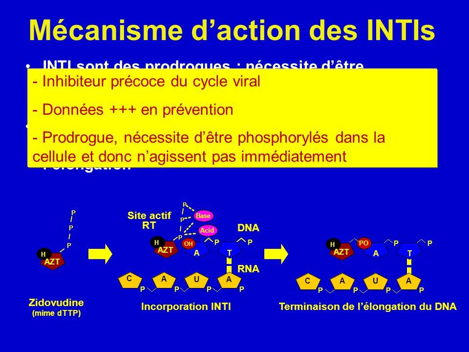 Mécanisme d'action des INTIs