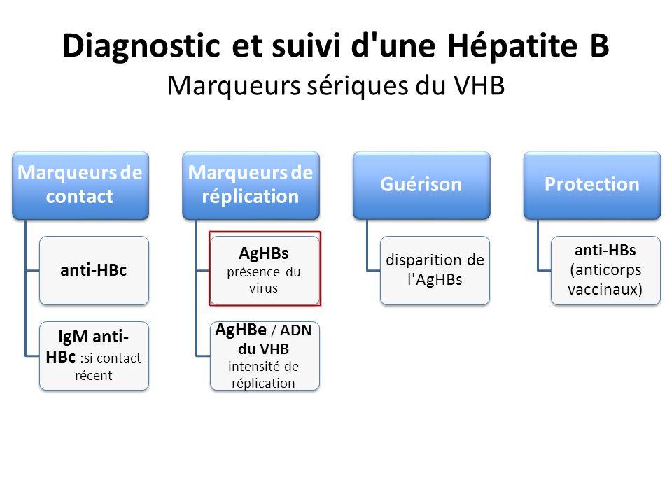 Diagnostic et suivi d une Hépatite B Marqueurs sériques du VHB