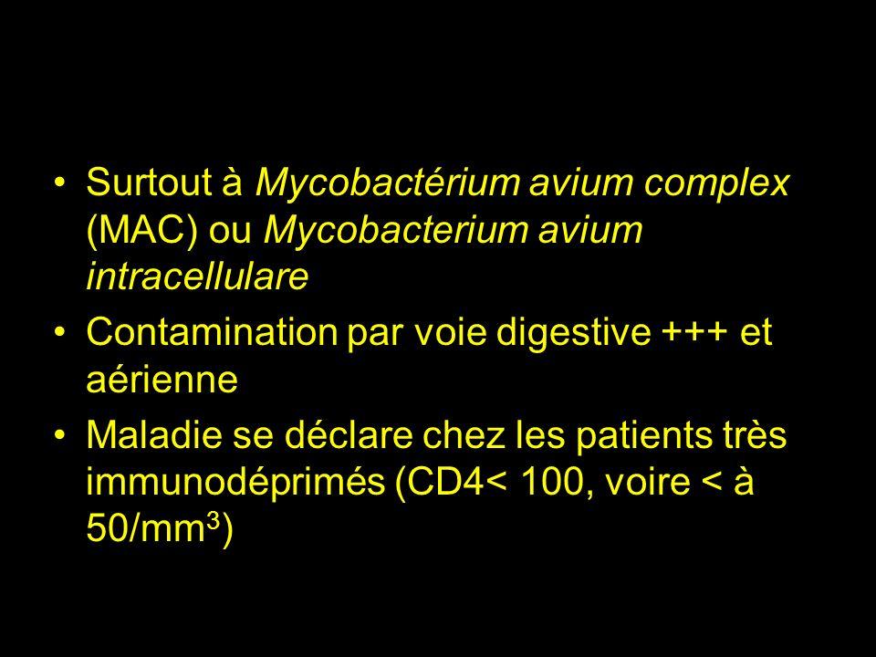 Surtout à Mycobactérium avium complex (MAC) ou Mycobacterium avium intracellulare