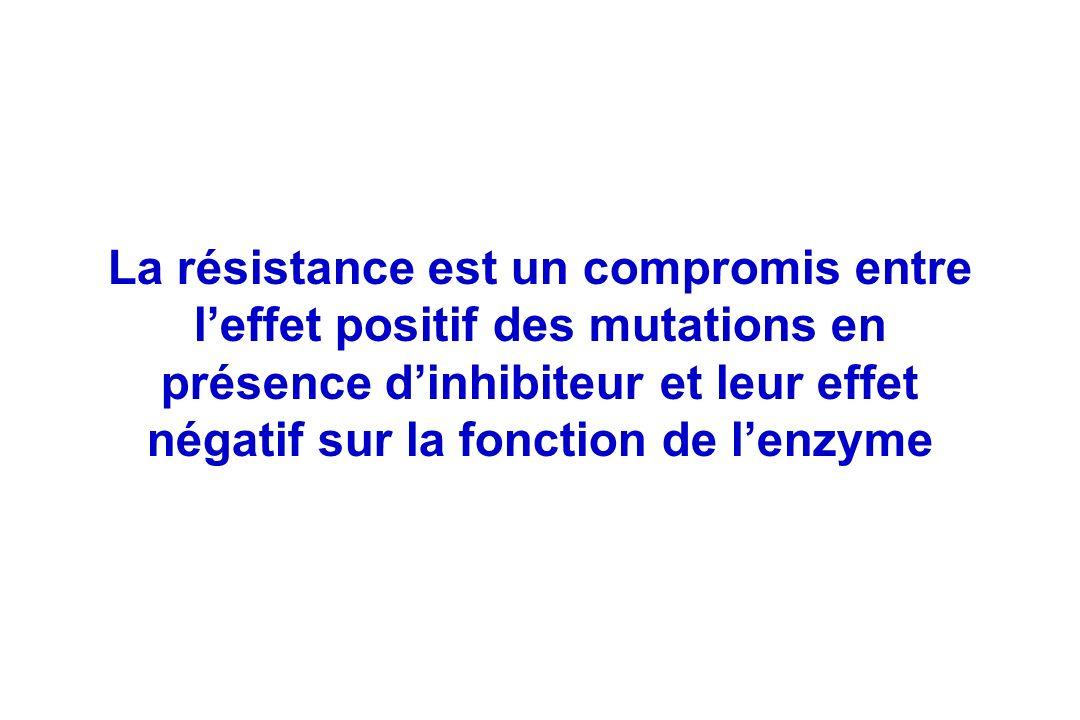 La résistance est un compromis entre l'effet positif des mutations en présence d'inhibiteur et leur effet négatif sur la fonction de l'enzyme
