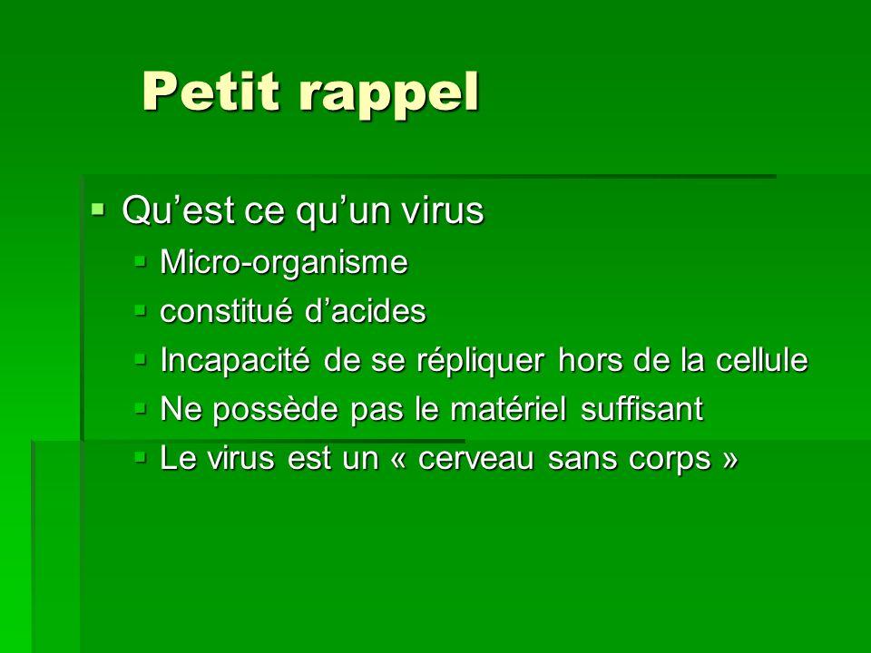 Petit rappel Qu'est ce qu'un virus Micro-organisme constitué d'acides