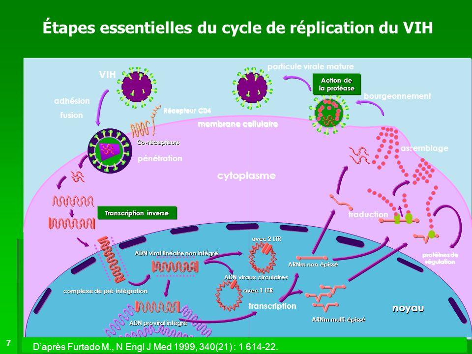 Étapes essentielles du cycle de réplication du VIH