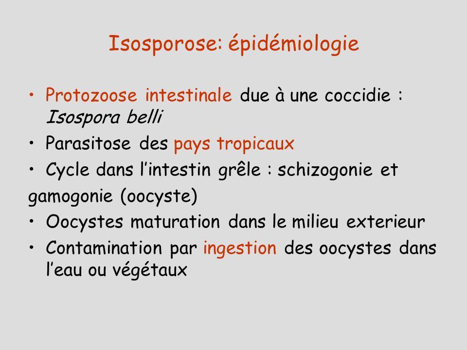 Isosporose: épidémiologie