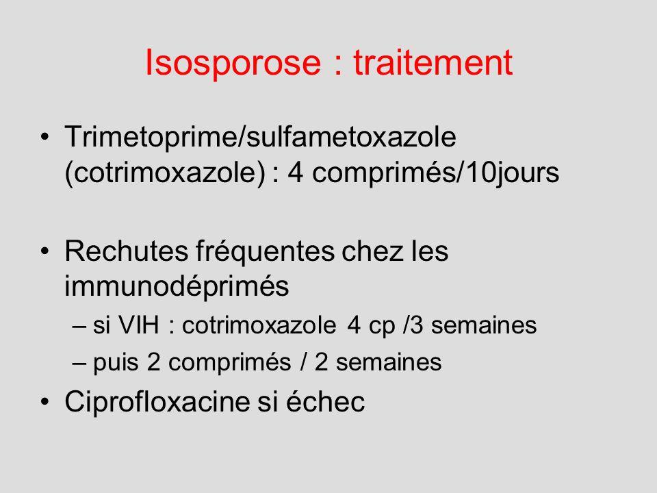 Isosporose : traitement