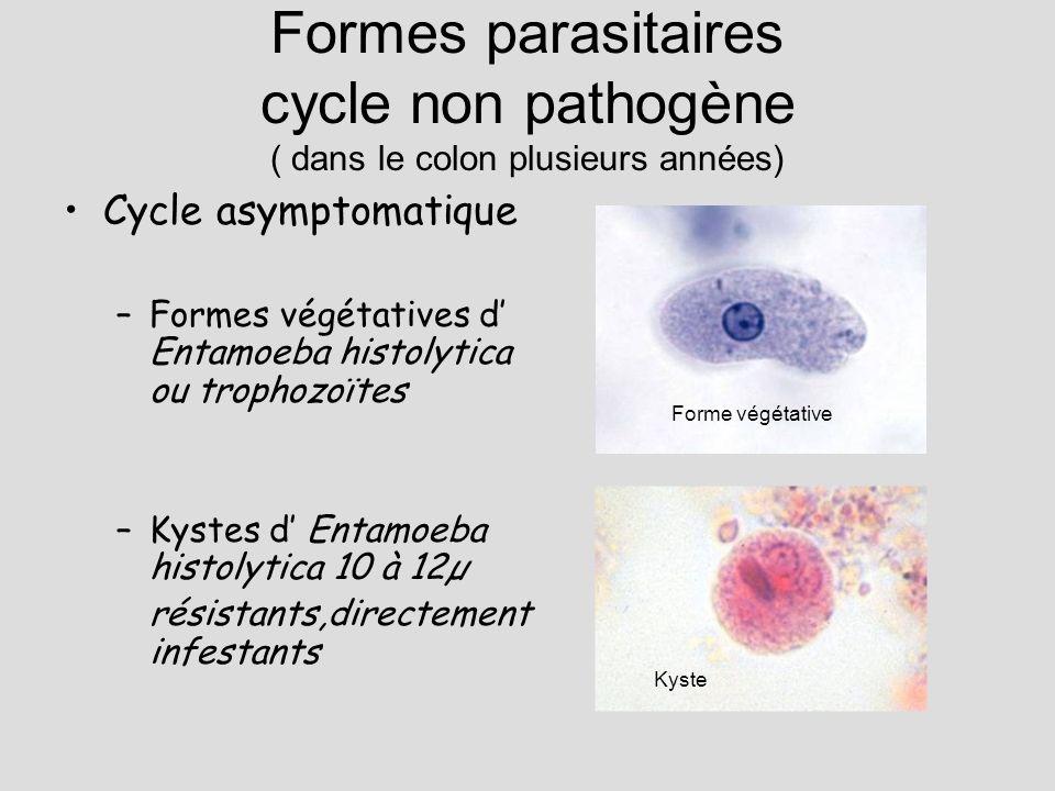 Formes parasitaires cycle non pathogène ( dans le colon plusieurs années)