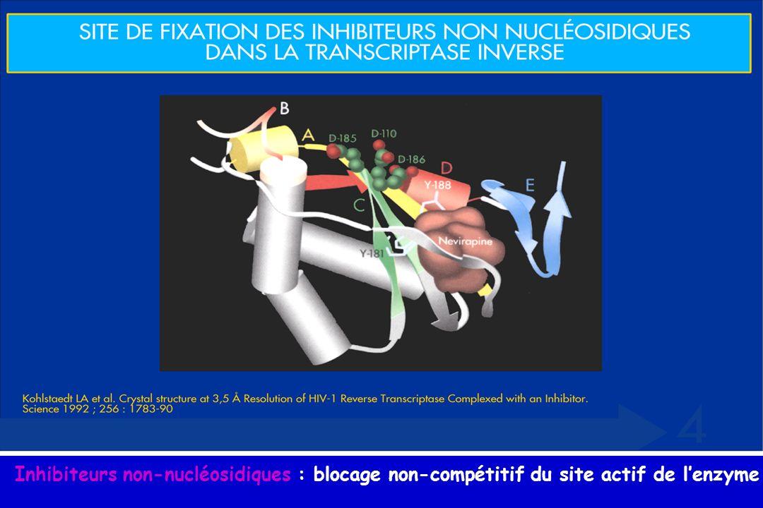 Inhibiteurs non-nucléosidiques : blocage non-compétitif du site actif de l'enzyme