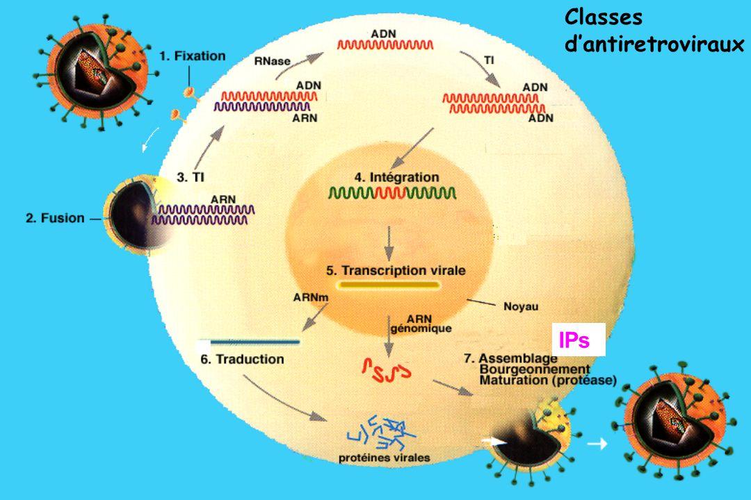 Classes d'antiretroviraux IPs