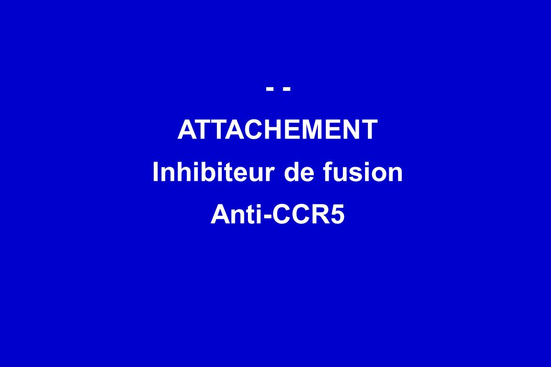 - - ATTACHEMENT Inhibiteur de fusion Anti-CCR5