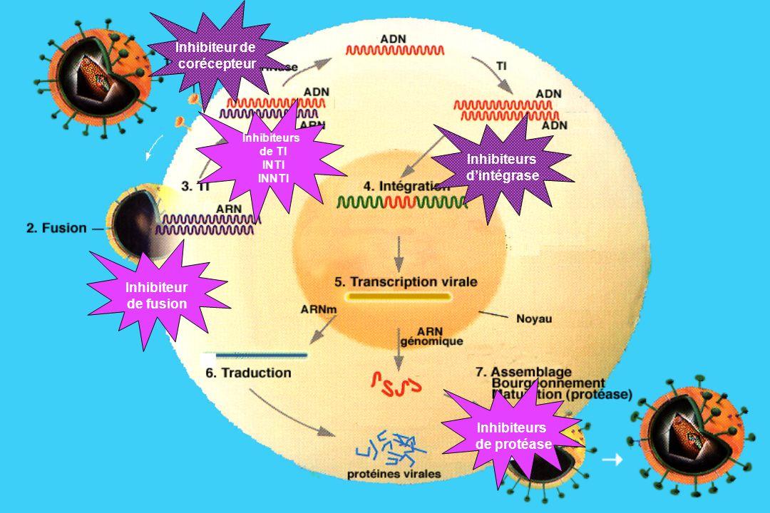 Inhibiteur de corécepteur Inhibiteurs d'intégrase Inhibiteur de fusion