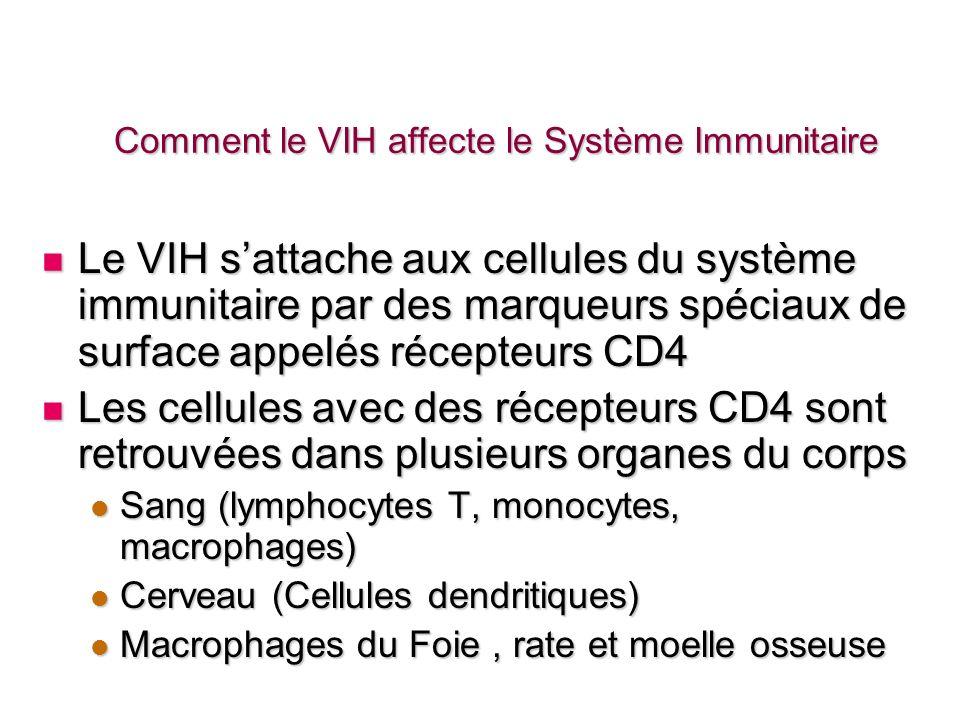 Comment le VIH affecte le Système Immunitaire