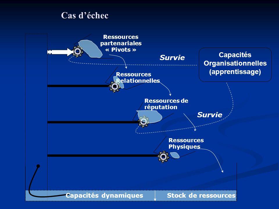 Ressources partenariales Capacités Organisationnelles
