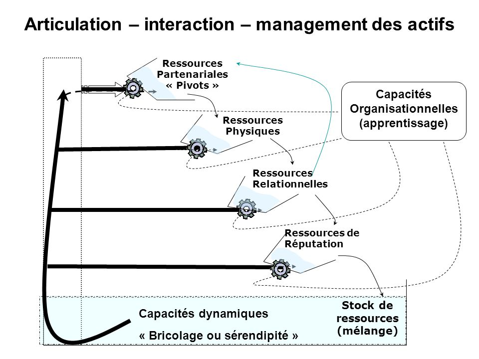Articulation – interaction – management des actifs