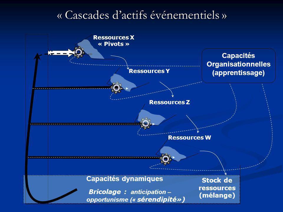 Capacités Organisationnelles Stock de ressources (mélange)