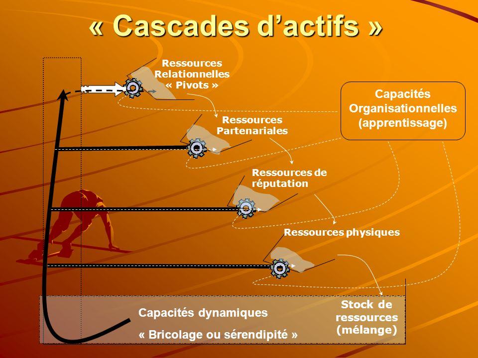 « Cascades d'actifs » Capacités Organisationnelles (apprentissage)