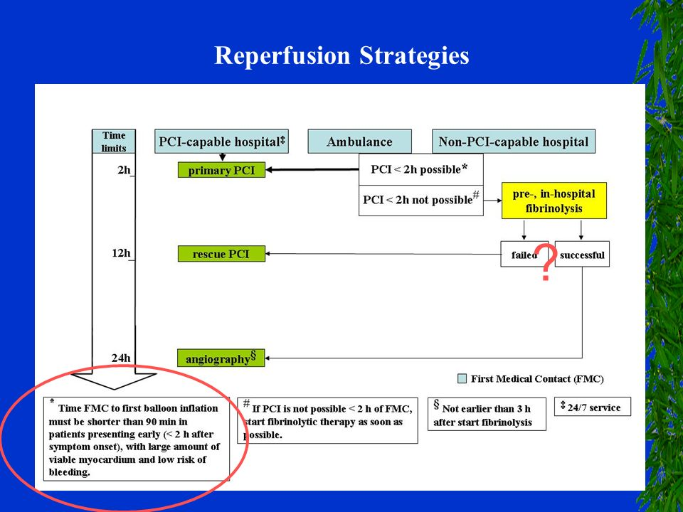 Reperfusion Strategies