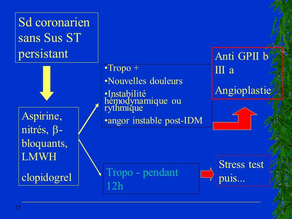 Sd coronarien sans Sus ST persistant