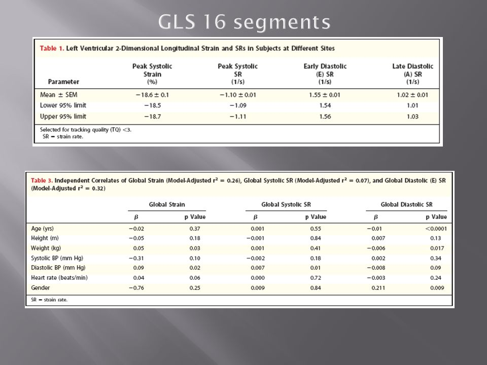 GLS 16 segments 26