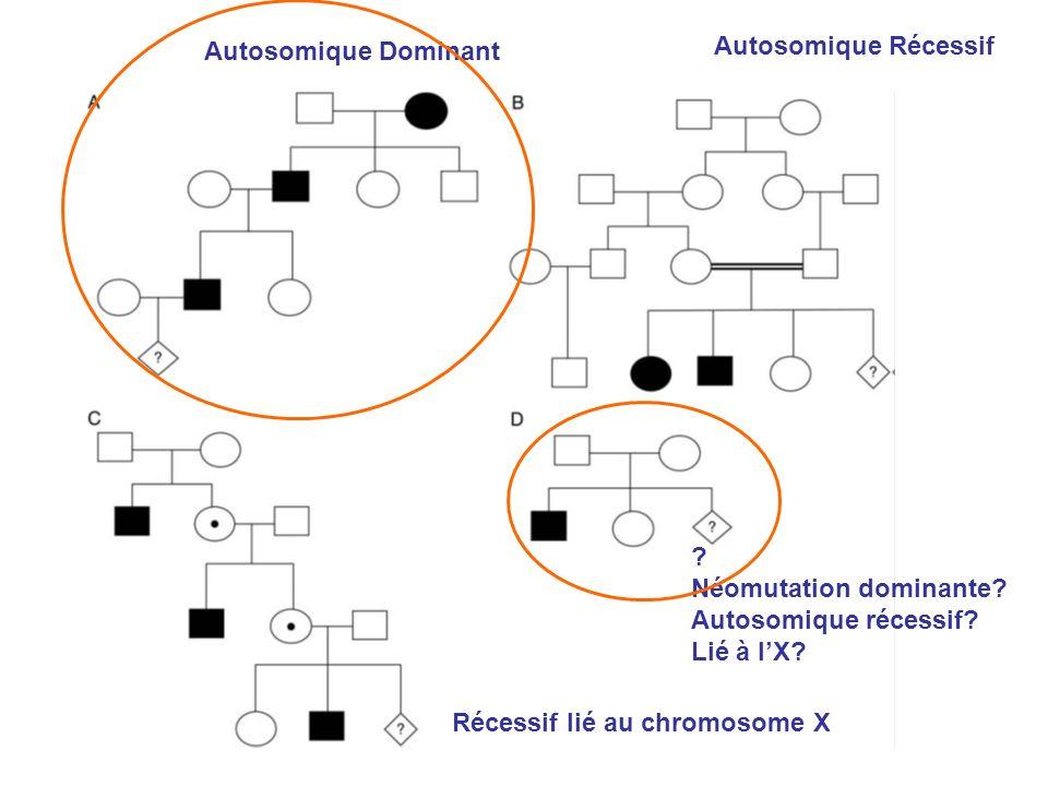 Autosomique Dominant Autosomique Récessif. Néomutation dominante Autosomique récessif Lié à l'X