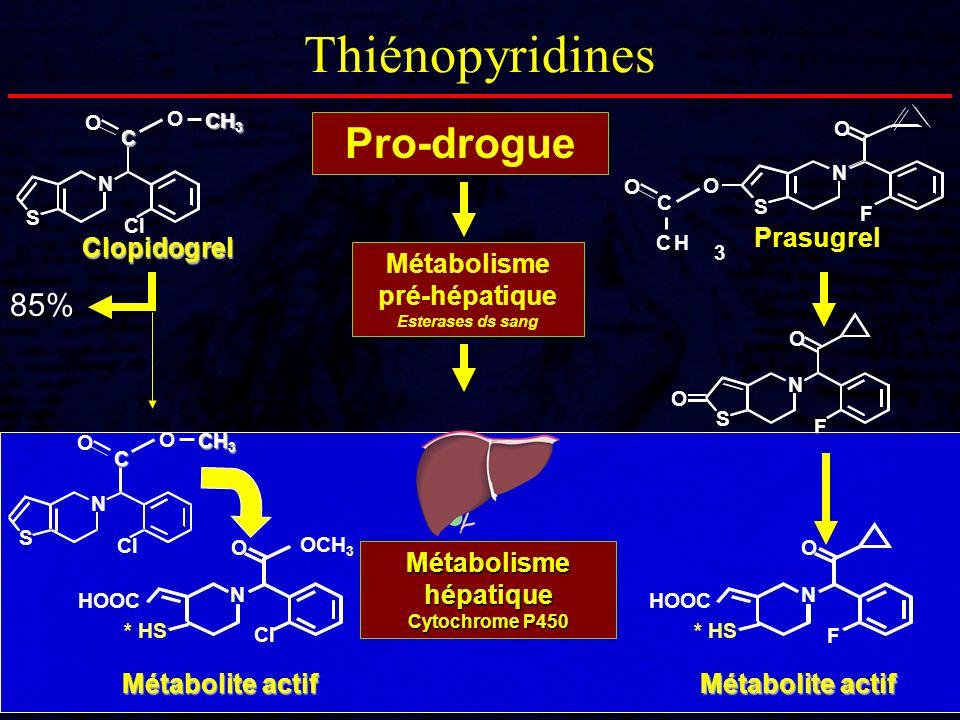 Métabolisme pré-hépatique Esterases ds sang
