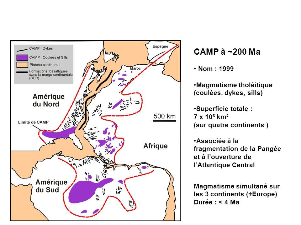 LIMITE TRIAS - JURASSIQUE : Volcanisme