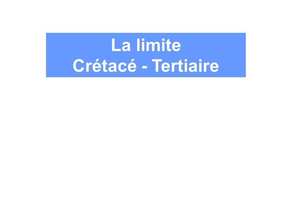 La limite Crétacé - Tertiaire