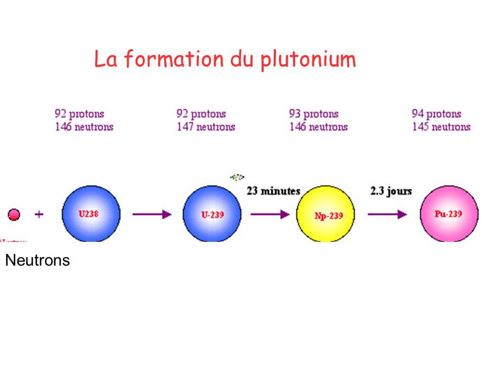 La formation du plutonium