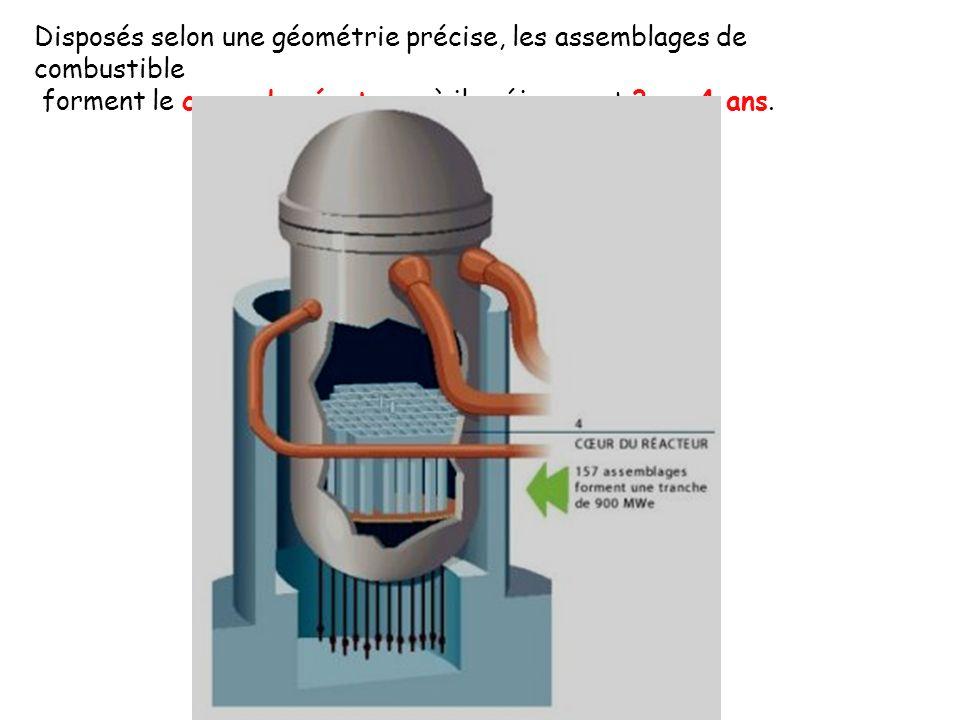Disposés selon une géométrie précise, les assemblages de combustible