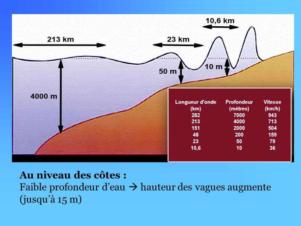 Au niveau des côtes : Faible profondeur d'eau  hauteur des vagues augmente (jusqu'à 15 m)