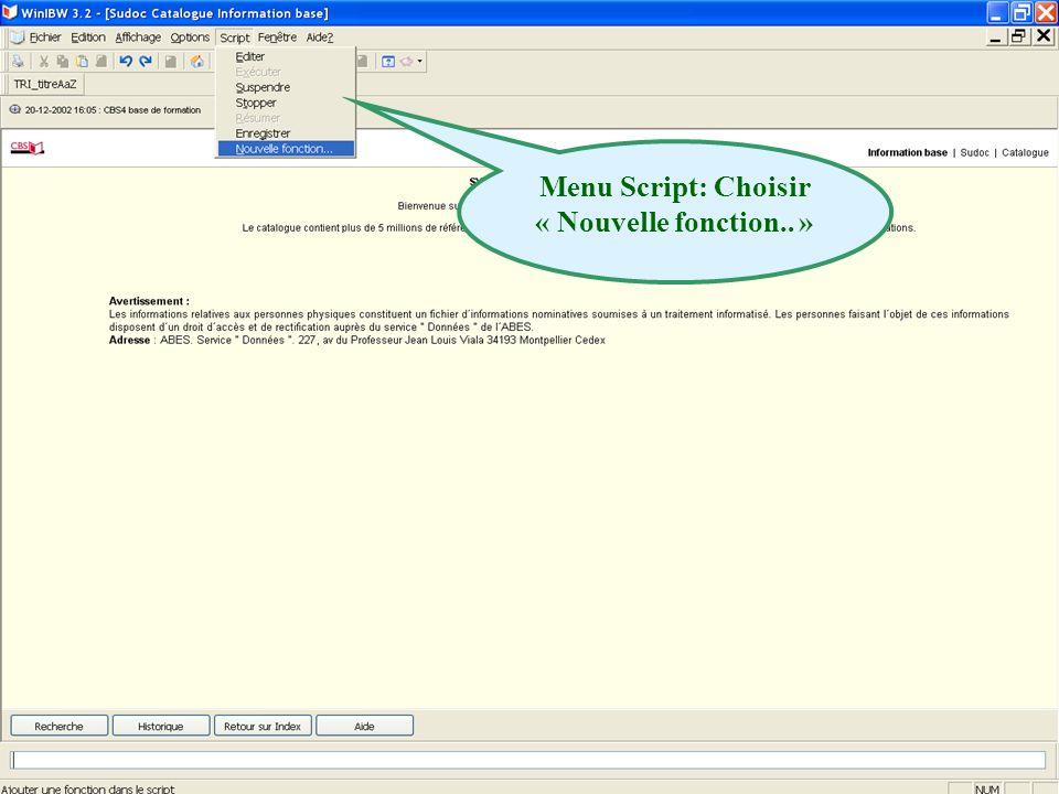 Menu Script: Choisir « Nouvelle fonction.. »