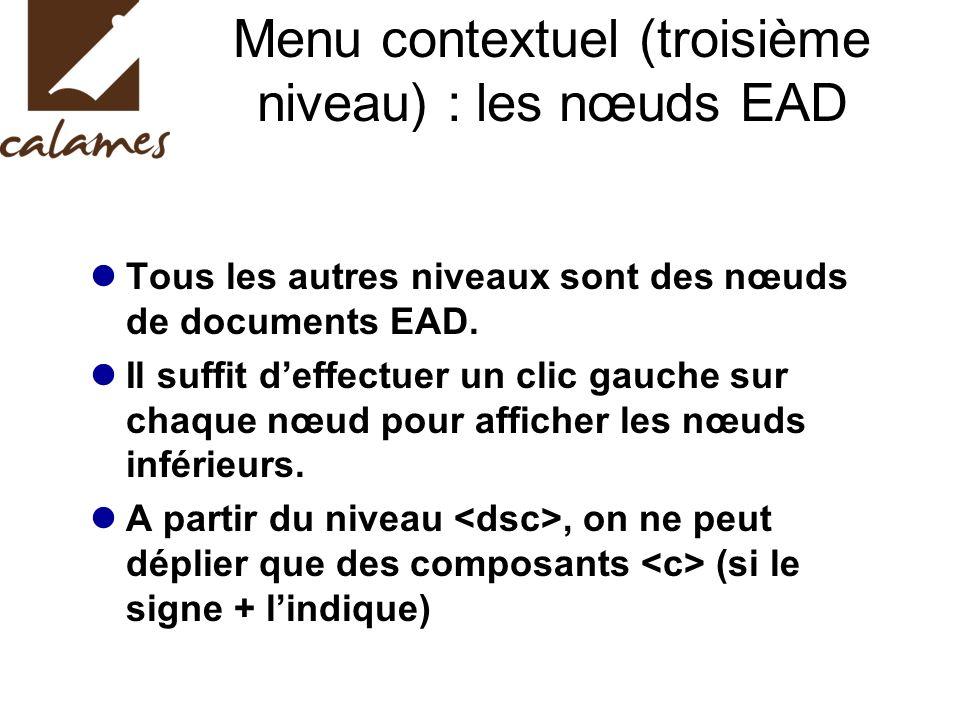 Menu contextuel (troisième niveau) : les nœuds EAD