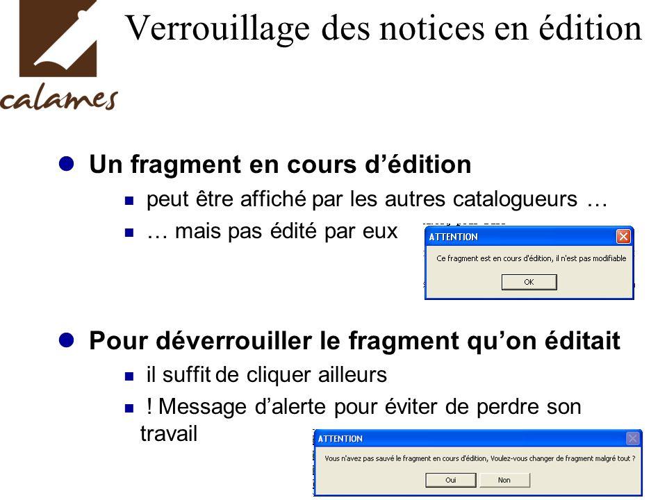 Verrouillage des notices en édition