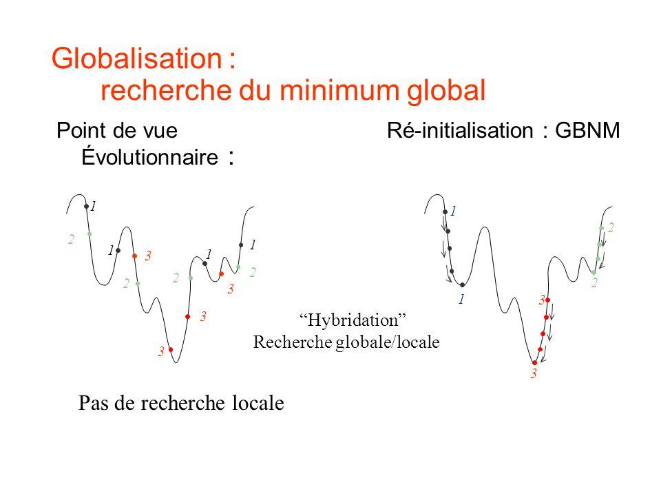 Globalisation : recherche du minimum global