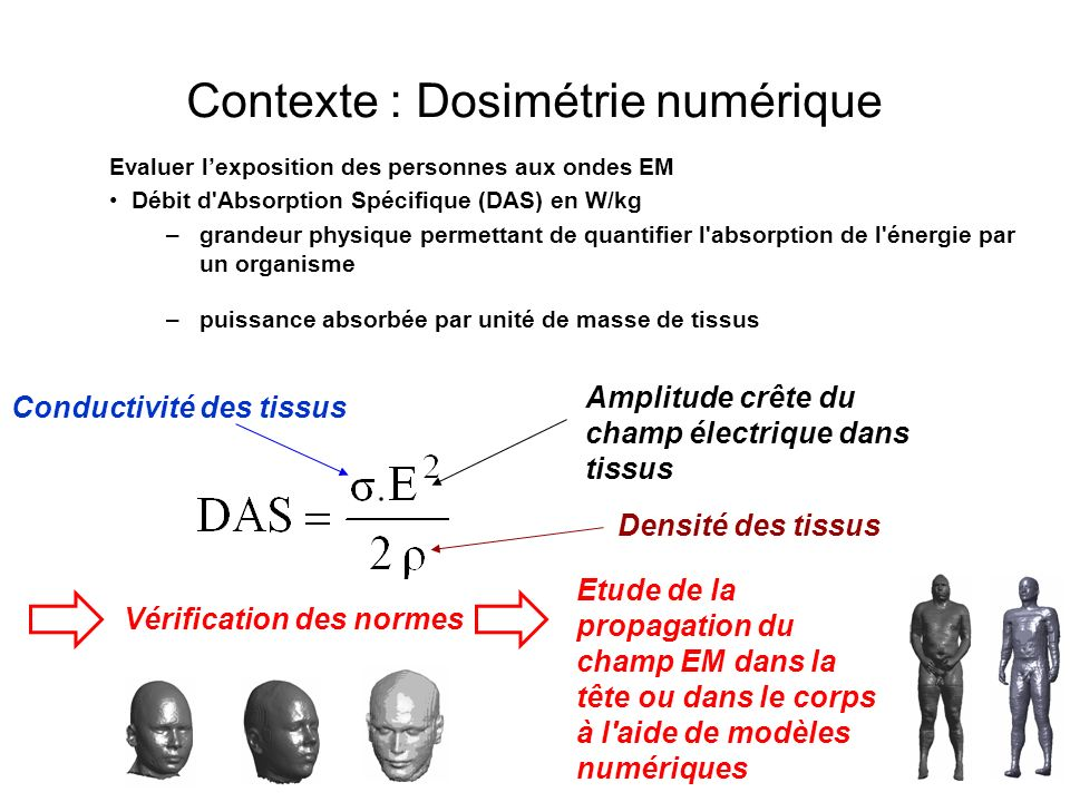 Contexte : Dosimétrie numérique