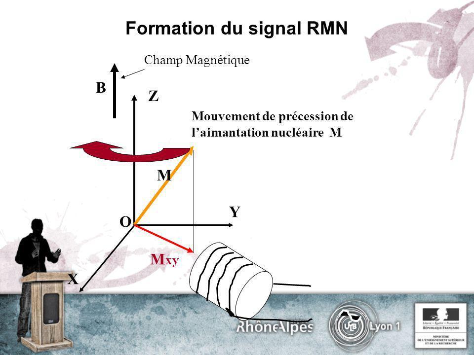 Formation du signal RMN