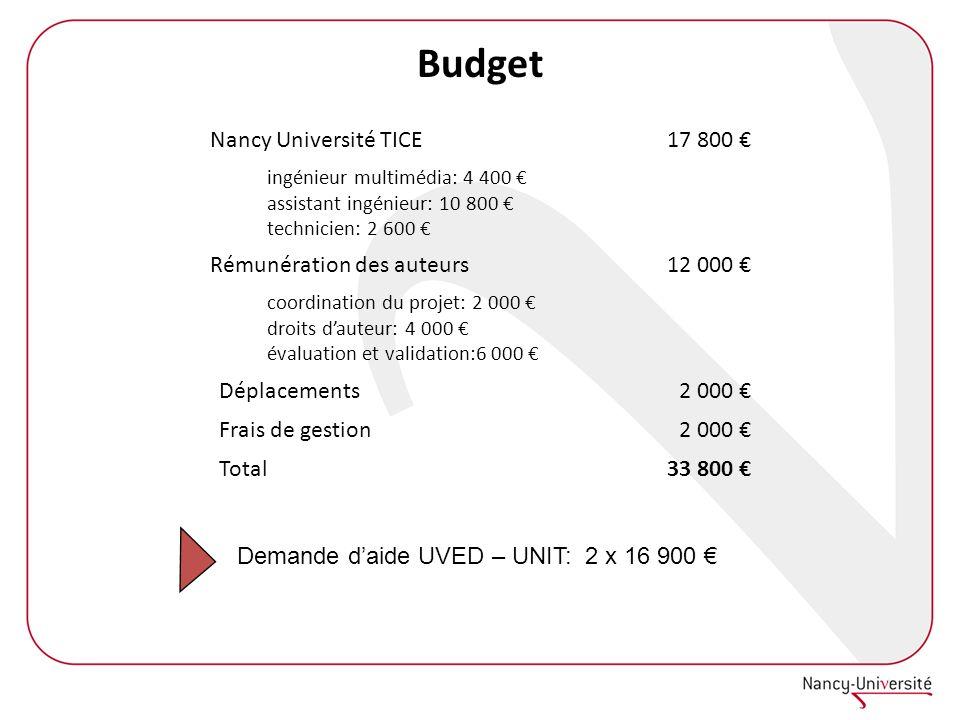 Budget Nancy Université TICE 17 800 € Rémunération des auteurs