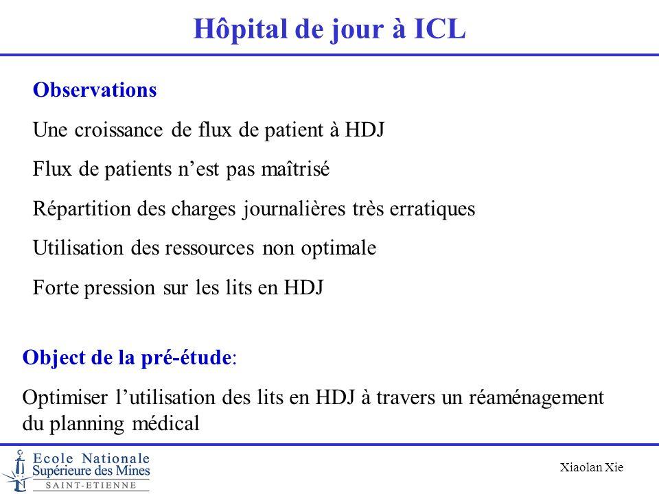 Hôpital de jour à ICL Observations
