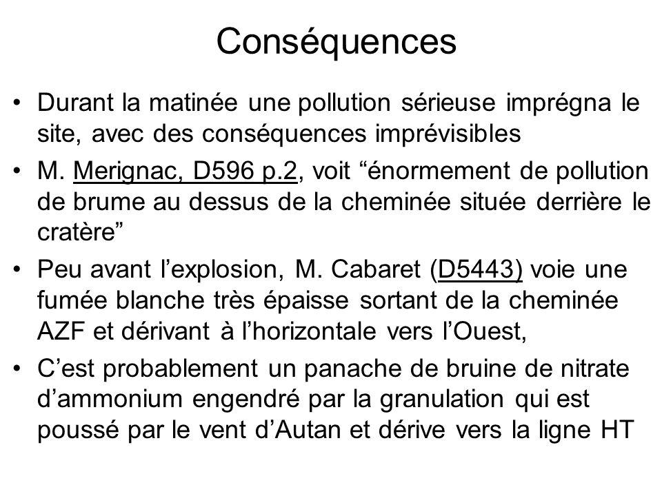 Conséquences Durant la matinée une pollution sérieuse imprégna le site, avec des conséquences imprévisibles.