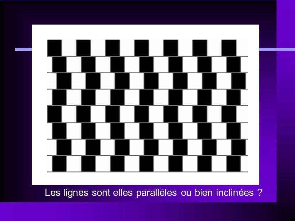 Les lignes sont elles parallèles ou bien inclinées