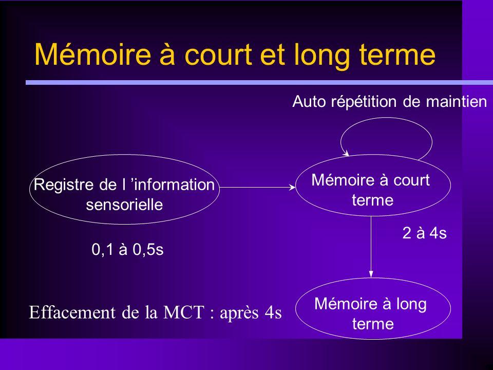 Mémoire à court et long terme