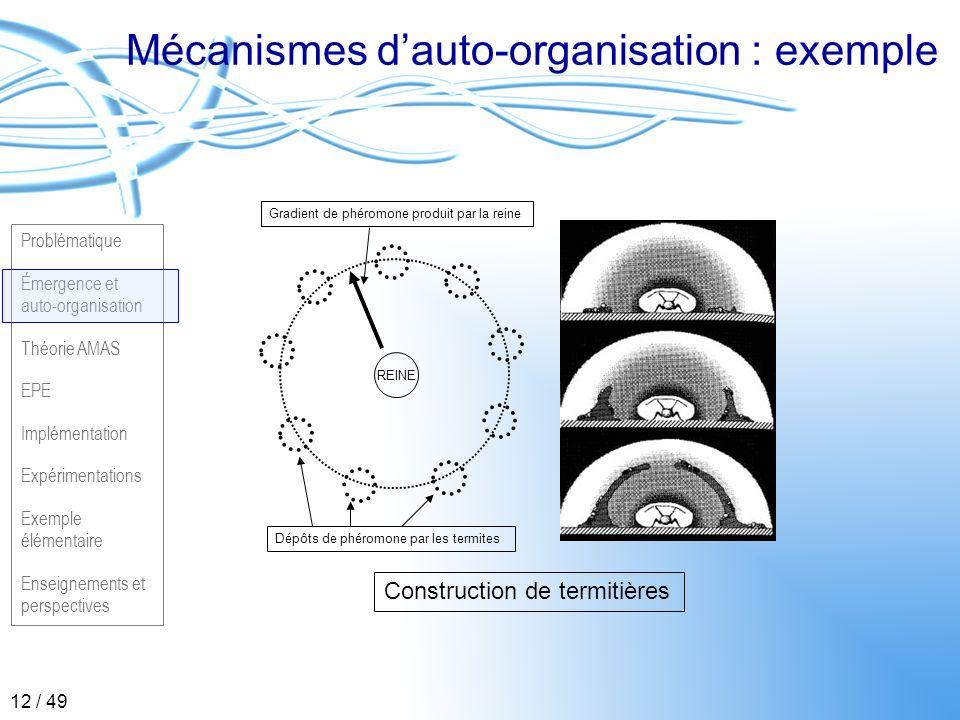 Mécanismes d'auto-organisation : exemple
