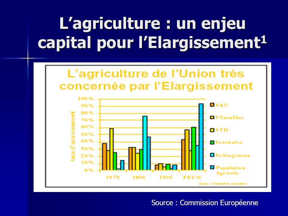 L'agriculture : un enjeu capital pour l'Elargissement1