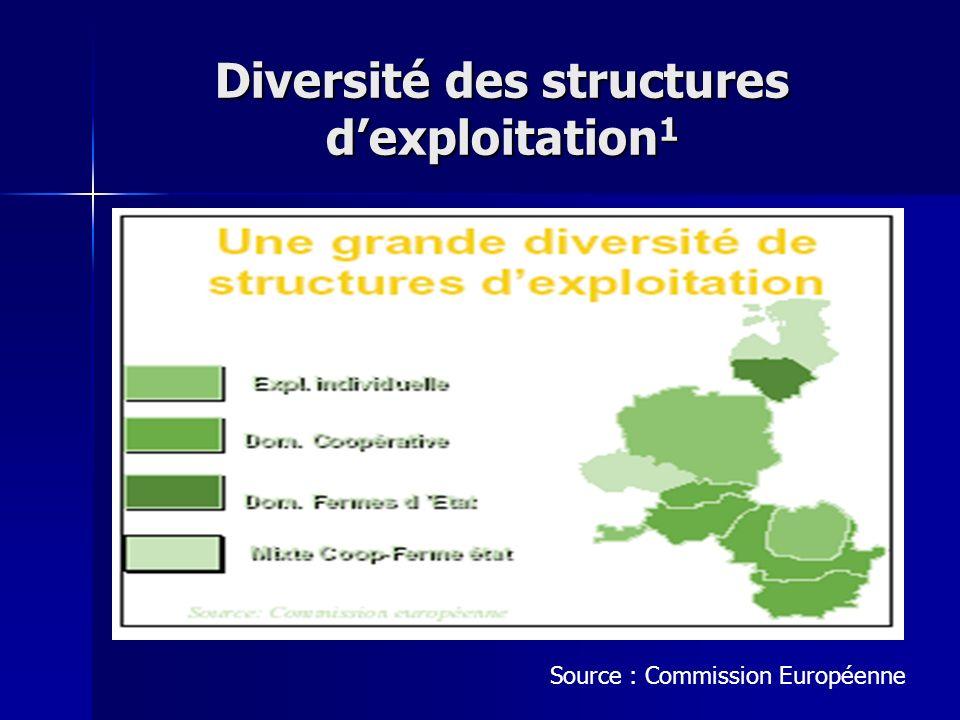 Diversité des structures d'exploitation1