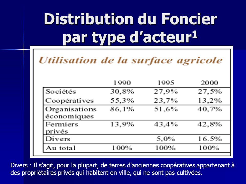 Distribution du Foncier par type d'acteur1