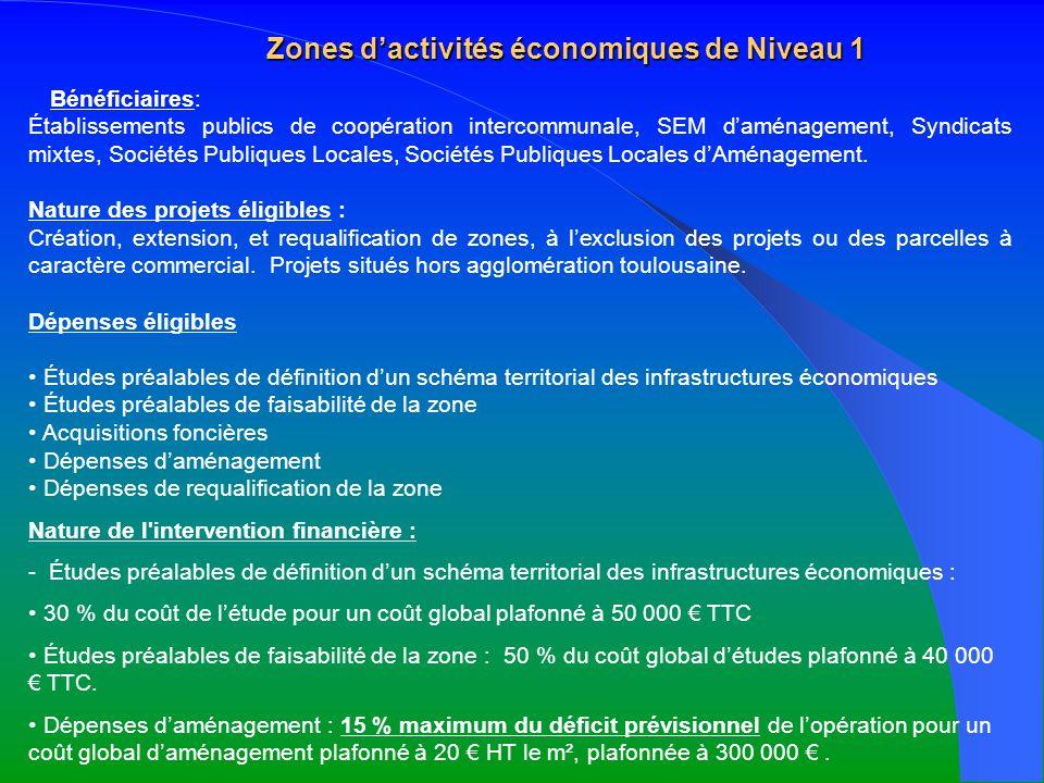 Zones d'activités économiques de Niveau 1