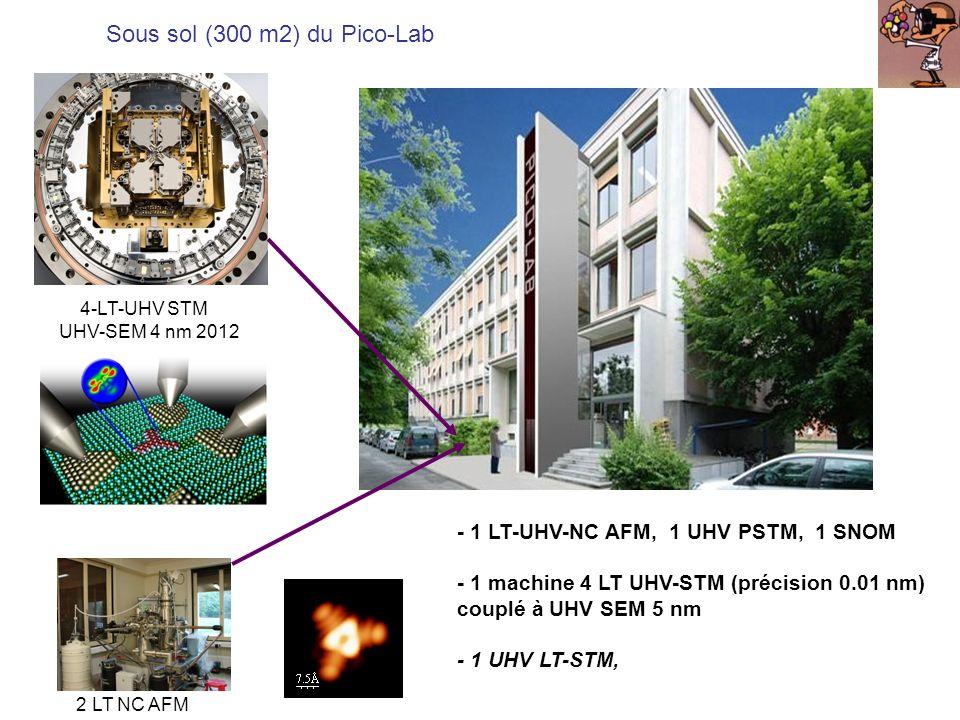 Sous sol (300 m2) du Pico-Lab