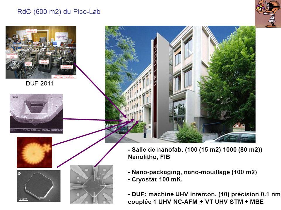 RdC (600 m2) du Pico-Lab UHV FIM DUF 2011