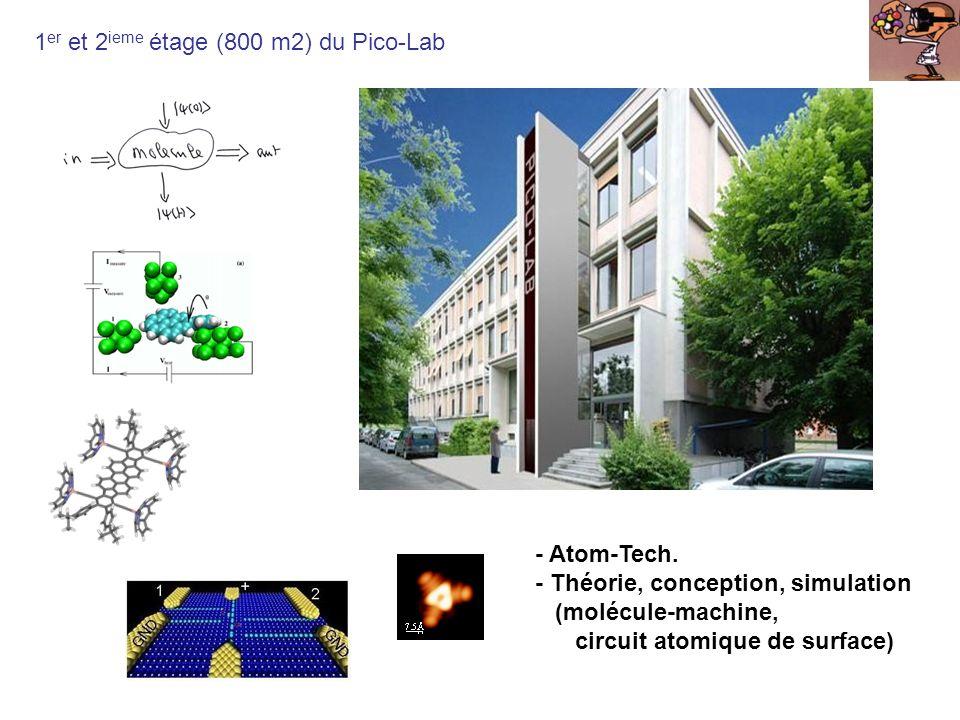 1er et 2ieme étage (800 m2) du Pico-Lab