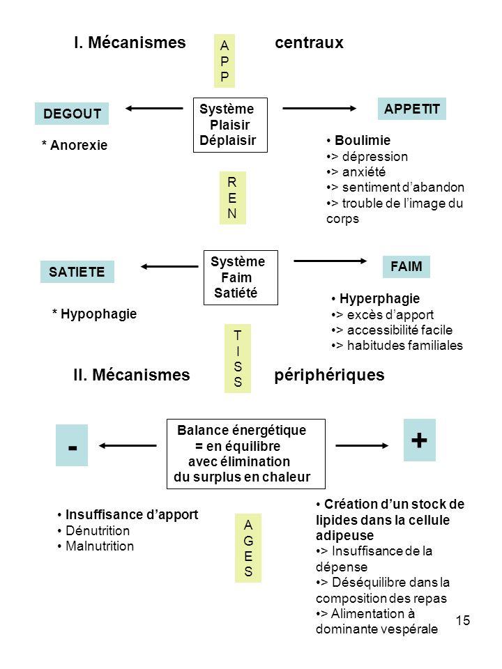 + - I. Mécanismes centraux II. Mécanismes périphériques A P Système